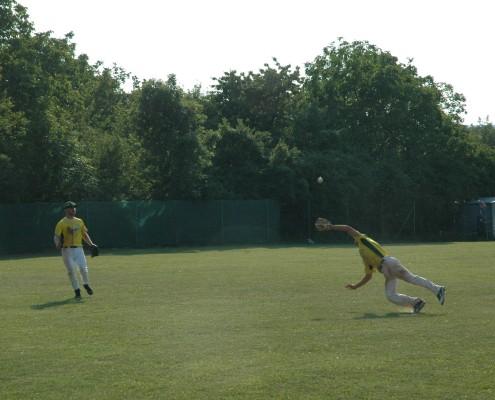 Baseballverein Grasshoppers - dydocon